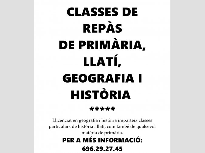 CLASSES PARTICULARS DE REPÀS A DOMICILI